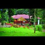 Tree Top Resort - Mukkali - Palakkad