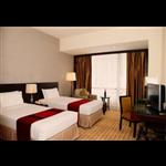 Hotel Rajshree Residency - Agrasen Colony - Raigarh