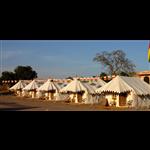 Royal Camp - Nagaur Camp - Nagaur