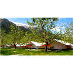 Apple Orchard Farm and Camping - Chitkul Road - Sangla