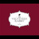 The Velveteen Rabbit - RA Puram - Chennai