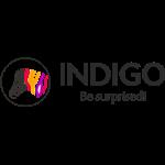INDIGO Paints Pvt Ltd