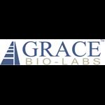 Grace Lab - White Town - Puducherry