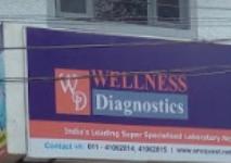 Wellness Diagnostics - Kailash Colony - Delhi