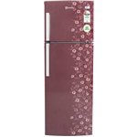 Electrolux 235 L Frost Free Double Door Refrigerator (EP242LMD)