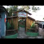 Freedom Ganga Cafe - Lakshman Jhula - Haridwar