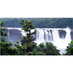 Athirappilly Falls - Athirappilly