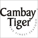 Cambaytiger.com