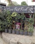 Shree Fast Food - Gadia Vihar - Aurangabad