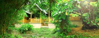 Vythiri Greens Resort - Lakkidi - Wayanad