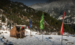 Woodscation - Dharamshala