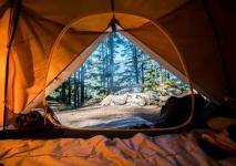 Thira Chanshal Camps - Shimla
