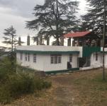 Woods Shimla - Shimla