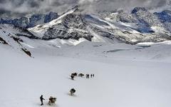 Thamsar Pass - Kangra