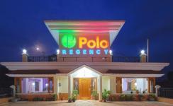 Hotel Polo Regency - Mandi