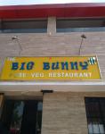 The Big Bunny - Adarsh Nagar - Ajmer
