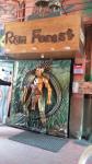 Rain Forest - Adyar - Chennai