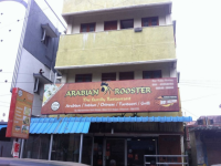Arabian Rooster - K.K. Nagar - Chennai