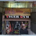 Tiger Gym - Mohali Sas Nagar - Chandigarh
