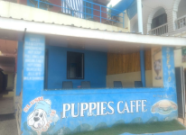 Puppies Caffe - Kovalam - Trivandrum