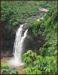 Pilucha Dhabdhaba Waterfalls - Vikramgad