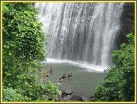 Vihigaon Waterfall - Nashik