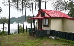 Pine Valley Resort - Kasauli