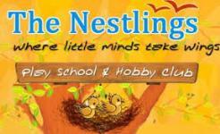 The Nestlings - Malviya Nagar - New Delhi