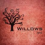 Willows Spa - Chetpet- Chennai