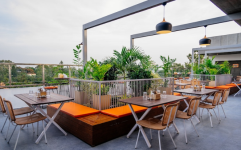 Tree Tops Bar & Kitchen - Lavelle Road - Bangalore