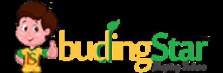 Budingstar.com