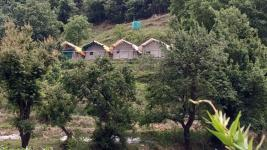 Clouds Camping - Shimla