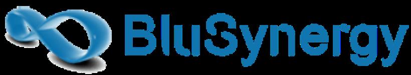 BluSynergy