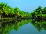 Tourkerala - Cochin