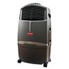 Usha Air Cooler Honeywell CL30XC
