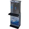 Aquaguard 600 Dual Facet Water Purifier