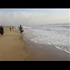 Besant Nagar Beach - Chennai
