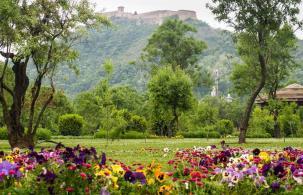Hari Parbat - Srinagar